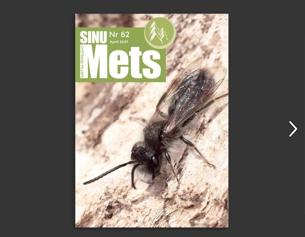 Sinu Mets - Nr 62 - Aprill 2021