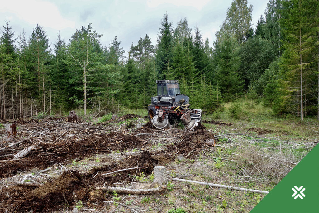 Maapinna ettevalmistus. Metsaühistu