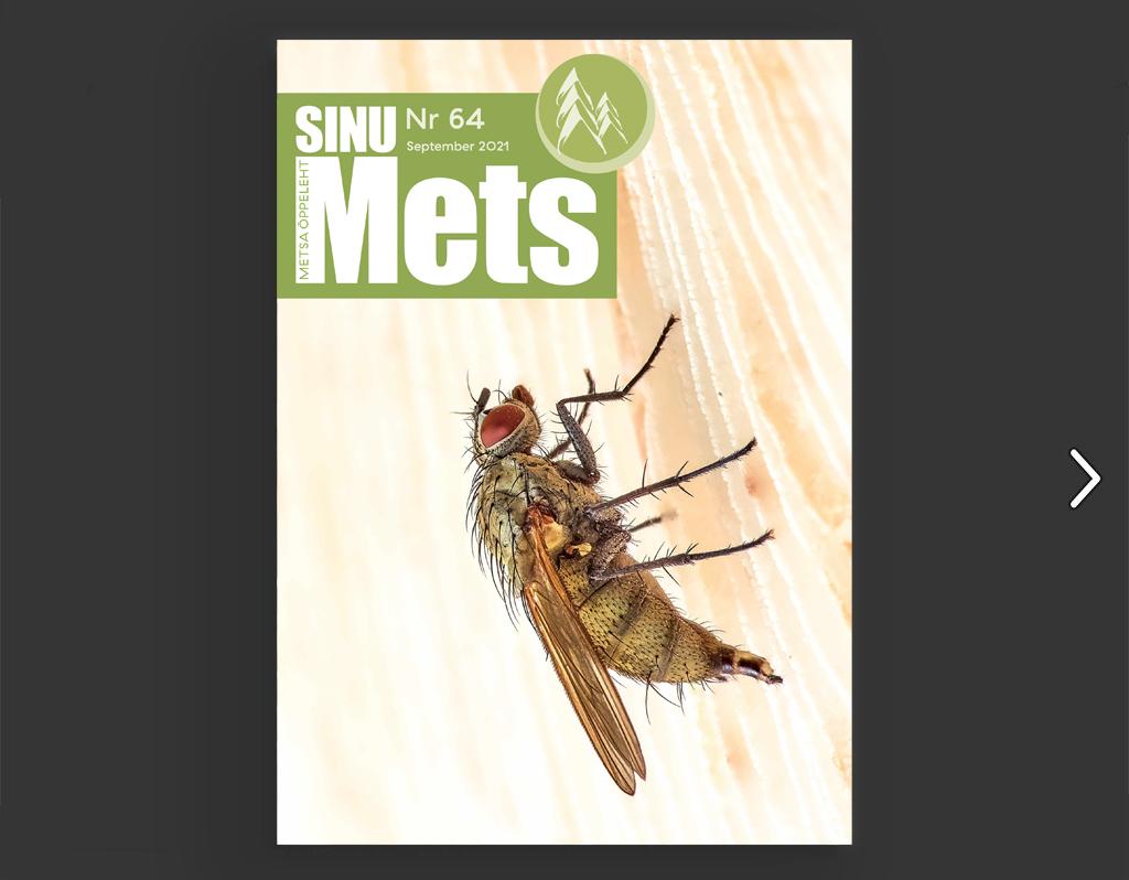 Sinu Metsa - Nr 64 - September 2021 - Metsaühistu